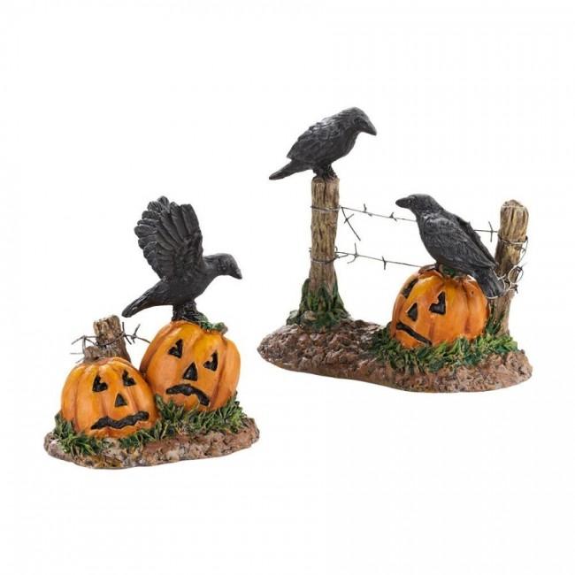15 halloween ravens