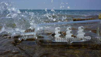 Photo of Things about Ships in Bottles: Carafologists!