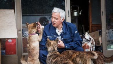 Photo of The Touching Story of Naoto Matsumura, the Man Who Returned to Fukushima to Feed His Animals