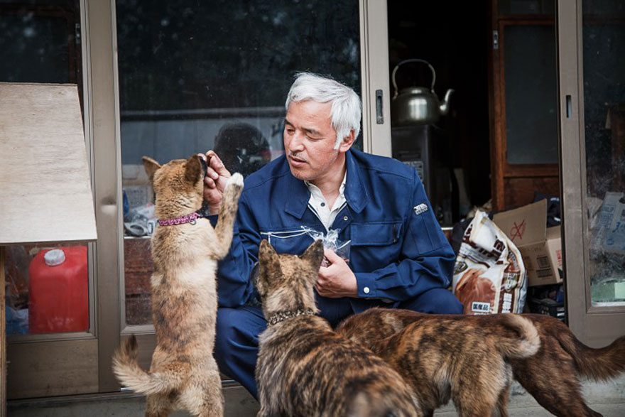 The Touching Story of Naoto Matsumura, the Man Who Returned to Fukushima to Feed His Animals