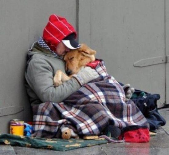 animal lovers acts of kindness 16