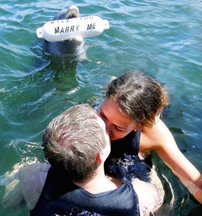 best marriage proposals 04