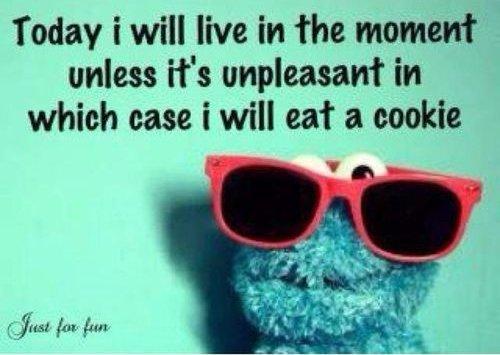 cookie monster wisdom 09