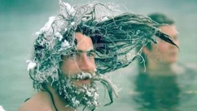 Photo of Really Funny Pictures of… Frozen Hair