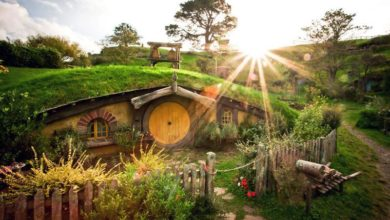 Photo of Fans of the Lord of the Rings Series Can Now Visit the Real Hobbiton