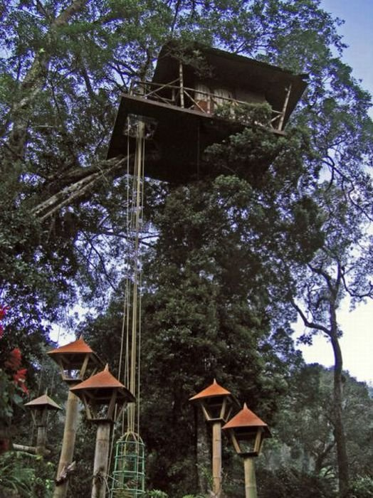 most amazing tree houses in the world 02