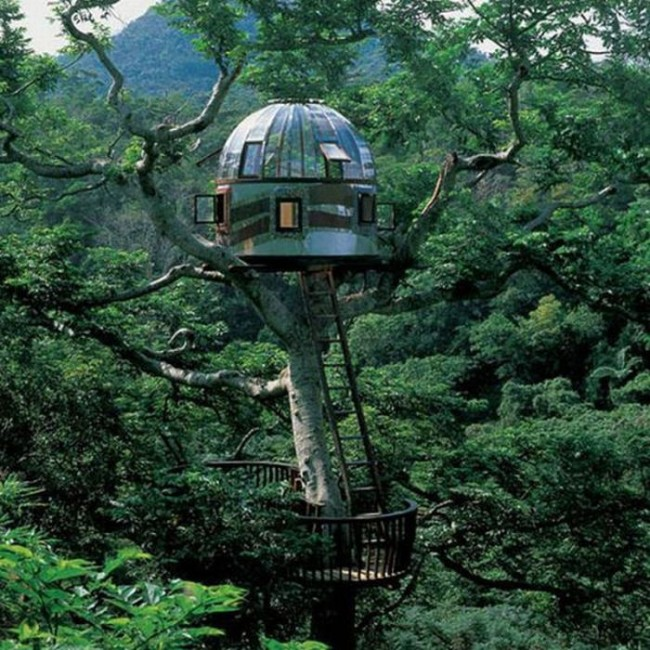 most amazing tree houses in the world 04