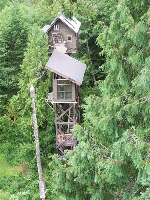 most amazing tree houses in the world 07