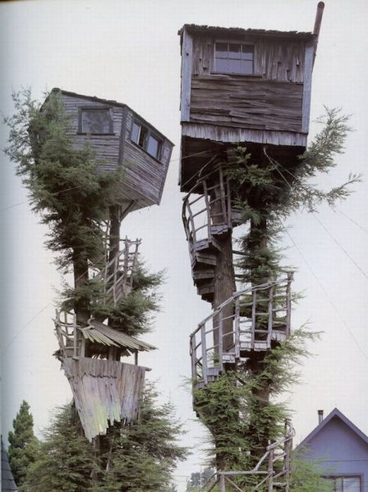 most amazing tree houses in the world 09
