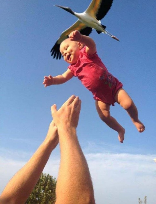 most perfectly timed photos 53