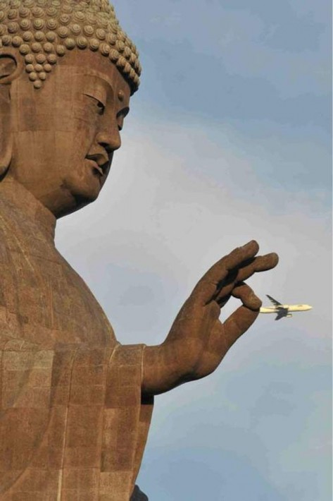 most perfectly timed photos 55