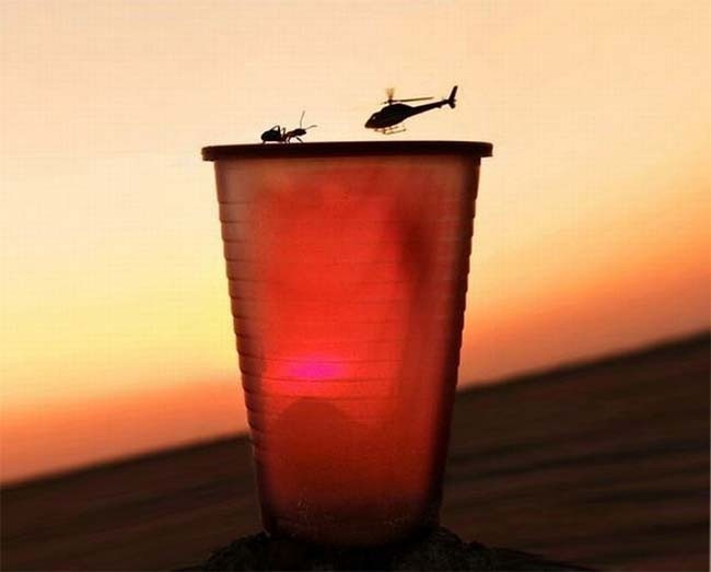 most perfectly timed photos 60