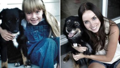 Photo of These Cute Photos of Pets and Their Owners Through the Years Prove that Animals Are Real Friends!