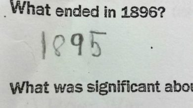 Photo of These Test Answers Are Completely Wrong, but Insanely Funny