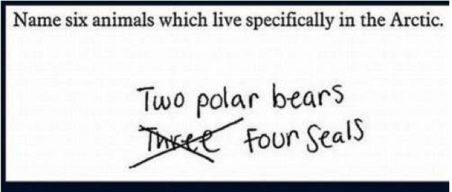 wrong but funny test answers 28