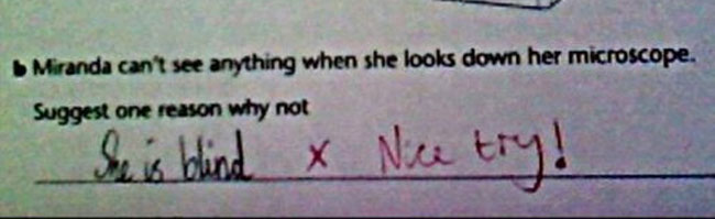 wrong but funny test answers 31