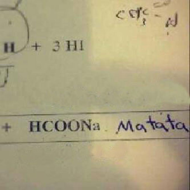 wrong but funny test answers 37